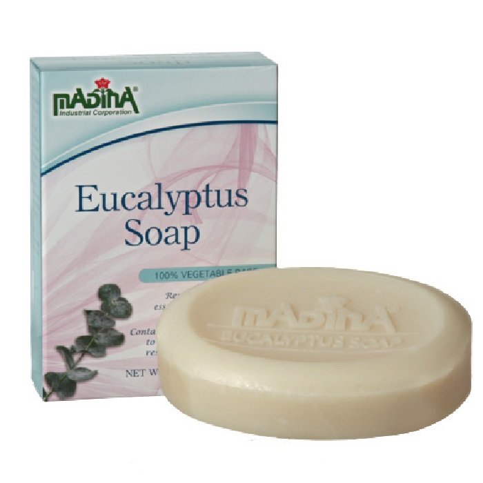 Eucalyptus Soap 3.5oz - Pack of 6 pieces