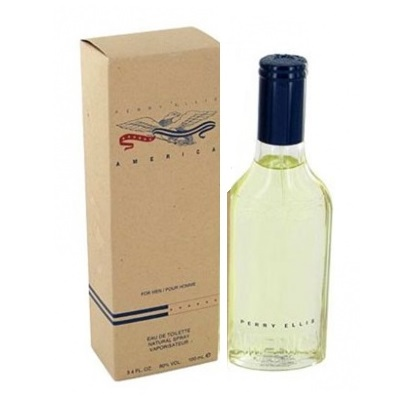 America Cologne by Perry Ellis 3.4oz Eau De Toilette spray for Men